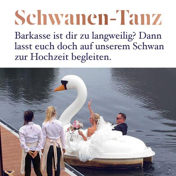 Schwanen-Tanz